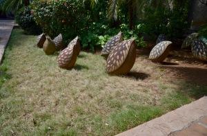 Jardin Teresa de Calcutta gourds 2
