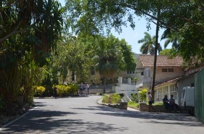 Finca Vigia 2 Roadway and House