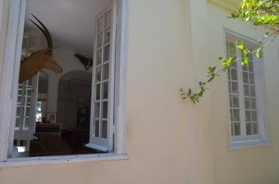Finca Vigia 23 Through the window